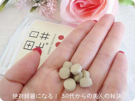 白井田七6